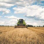 Gli italiani riscoprono la genuinità del cibo biologico